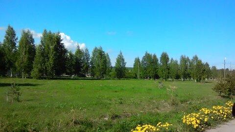 Романовка +3 км , ж\д Корнево , массив Аэродром - Фото 1