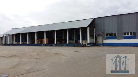 Производственно-складской комплекс в Пушкинском районе - Фото 2