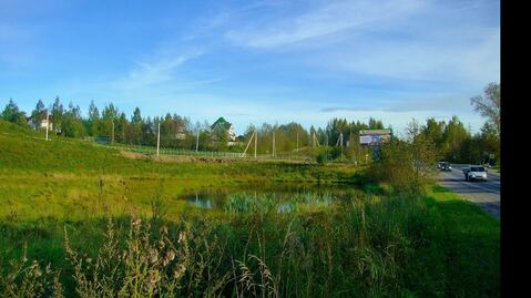 Продается участок 55 соток под автоиндустрию в 3 км от Всеволожска - Фото 3