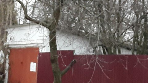 Продается дом с гаражем в городе во Фрунзенском районе.  Дом . - Фото 1