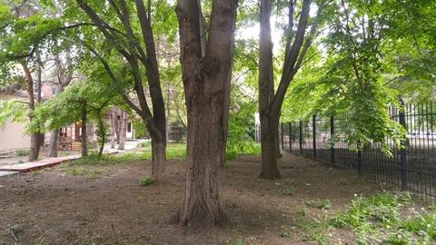 Интересный участок 6 соток под коммерцию рядом с университетом! - Фото 3