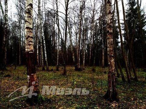 Продажа участка, Сазонки, Дмитровский район - Фото 2