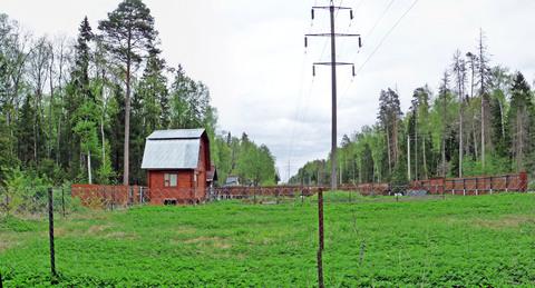 Черноголовка, СНТ - Крона - Фото 5