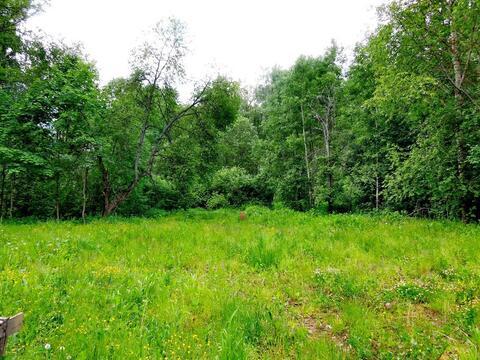 Продается дом рядом с г.Струнино, От МКАД 89 км по Ярославскому шоссе. - Фото 2