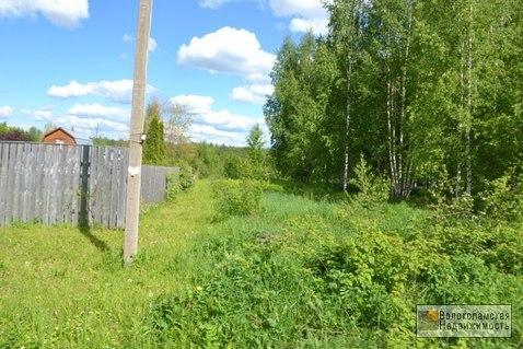 Участок 15 соток в д.Козино Волоколамского района - Фото 3