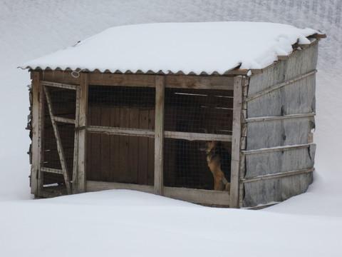Сдам склад, гараж, ангар неотапливаемый Михайловское ш.(заправкатнк) - Фото 4