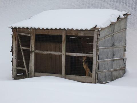 Сдам склад, гараж, ангар неотапливаемый Михайловское ш.(заправка тнк) - Фото 4