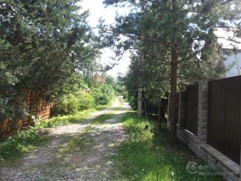 Дача СНТ Хвойный лес - Фото 2