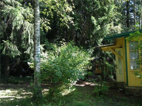 Участок 12 соток, лесной, с плодовыми и лесными деревьями, в хорошем с - Фото 2