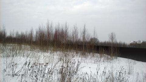 Каширское шоссе 48 км от МКАД с.Вельяминово, Участок 15 соток - Фото 2