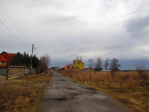 Калининградская область, зеленоградский район, п муромское, ул каштановая