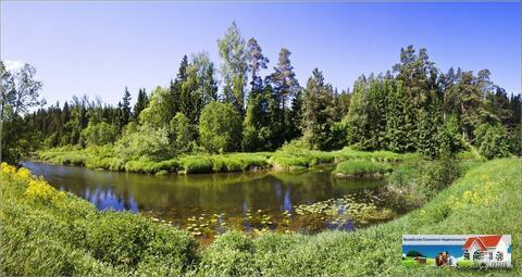 Лесной участок 45 соток рядом с рекой Искона, д. Пуршево. - Фото 1