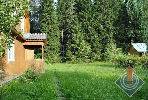 Дача у леса в СНТ Связист-3 у д. Литвиново и д. Любаново - Фото 2