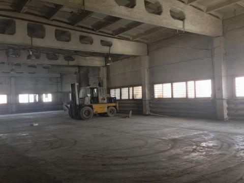 Сдам теплое отдельно стоящее здание 660 кв.м. - Фото 2