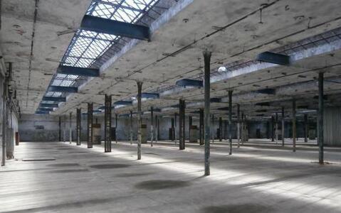 Аренда склада в Ногинске - Фото 1