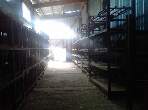 Сдаются в аренду холодный склад в пос.Дружный - Фото 5
