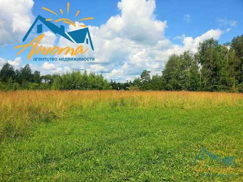 Инвестиционный проект в деревне Кабицыно на участке 3.5 га. - Фото 3