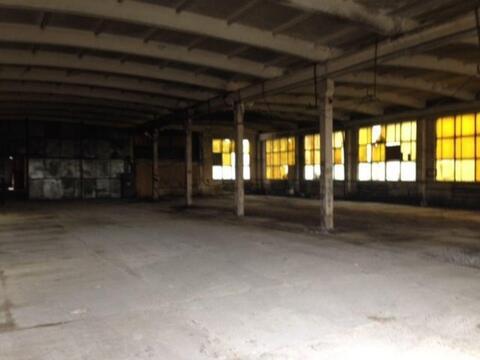 Сдам складское помещение 1240 кв.м, м. Звездная - Фото 2