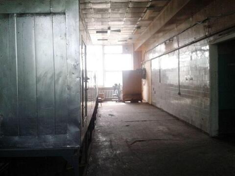 Сдам складское помещение 580 кв.м, м. Проспект Ветеранов - Фото 2