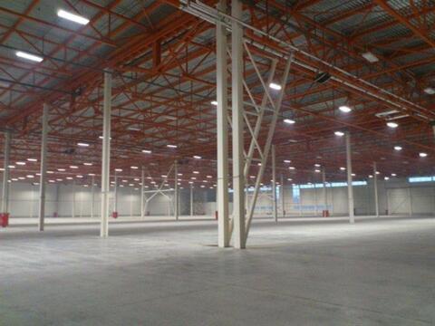 Сдам складское помещение 6500 кв.м, м. Комендантский проспект - Фото 1