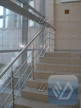Сдам офис 125 кв.м, Авангардная ул, д. 3 - Фото 5