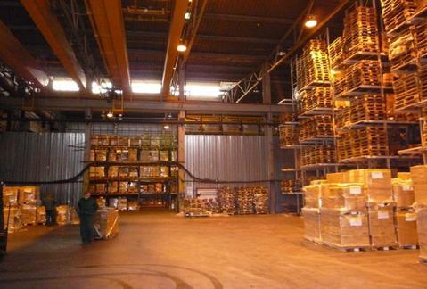 Офисно-складской комплекс, Аннино - Фото 4