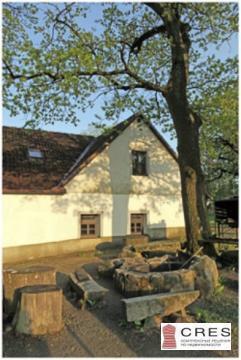 Готовый бизнес в Чехии - Фото 3