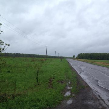 Земельный участок д. Большое Карасево - Фото 2