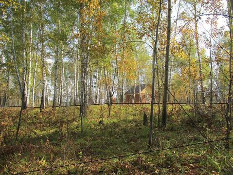 Участок 20 соток с лесом в п.Минино - Фото 1