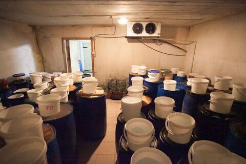 Действующий бизнес - производство салатов, соленых и квашенных овощей. - Фото 5