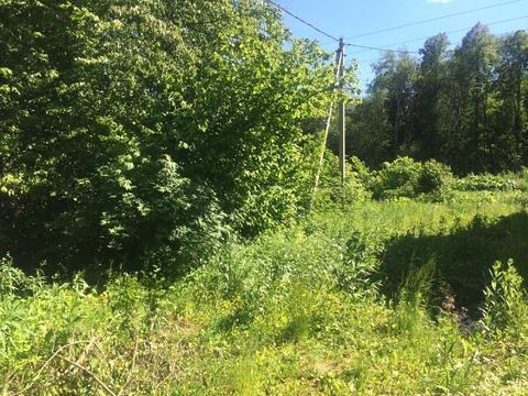 Продается лесной участок 25 соток ИЖС в д. Перхурово - Фото 3