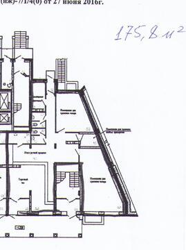 Торгово-офисное помещение на первом этаже, отдельный вход.175,8 м2 - Фото 1