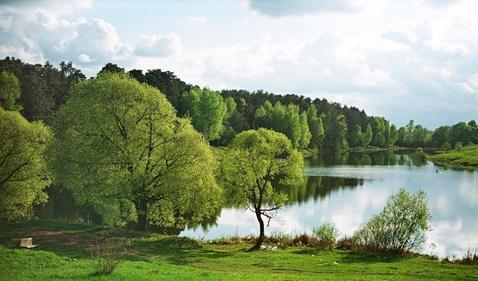 Участок 4,7 сотки у леса, на берегу реки. г. Климовск, СНТ Дубрава - Фото 4