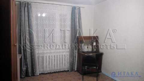 Аренда комнаты, м. Сенная площадь, Ул. Садовая - Фото 5