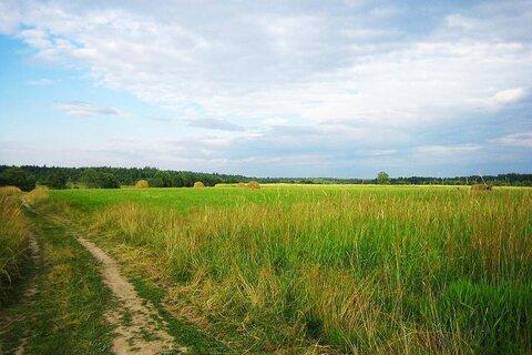 Продается участок сельхоз назначения 25 Га 80 км до КАД мурманское шос - Фото 2