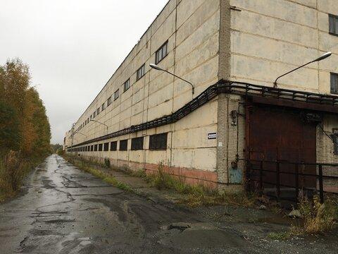 Продам производственный комплекс 11 934 кв.м. - Фото 1