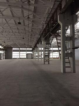 Продажа под производство 5000 кв. м, Белая Калитва - Фото 4