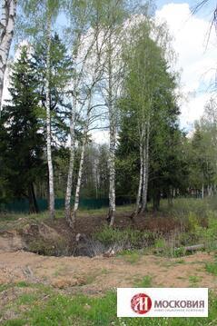 Участок у пруда и леса с лесной посадкой и личным водоемом, Киевское ш - Фото 5