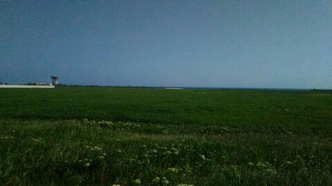 Продам зем.участок в Витино - Фото 2