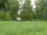 Продается участок 32 сотки на первой линии озера Большое Покровское. - Фото 4