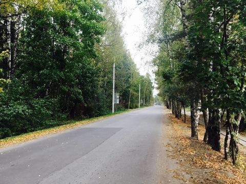 Продается земельный участок в п. Зеленоградский - Фото 3