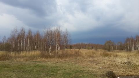 Дача в заповеднике Завидово - Фото 3