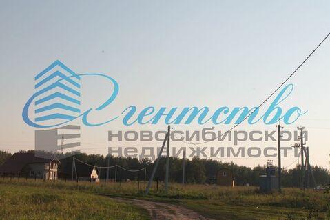 Продажа участка, Садовый, Новосибирский район - Фото 5