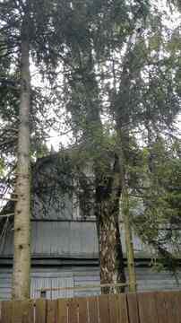 Продажа участка 5 соток в черте г. Одинцово (все коммуникации) - Фото 2