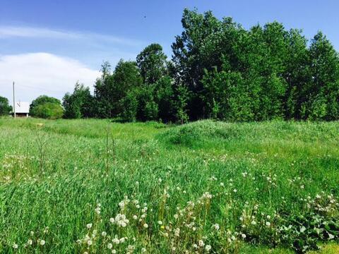 Недорого земельный участок 15 соток в тихой деревне Муравьево, Титово - Фото 2