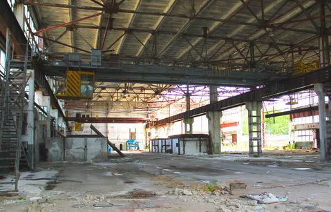 Продам производственный комплекс 11920 кв. м. - Фото 5