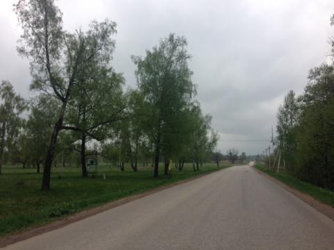 20 соток с лесом д. Прохорово Чеховский р-н - Фото 2
