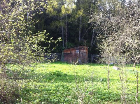 Дачный домик у леса в дачном поселке Бабаево, Рузский район, 93 км. - Фото 5