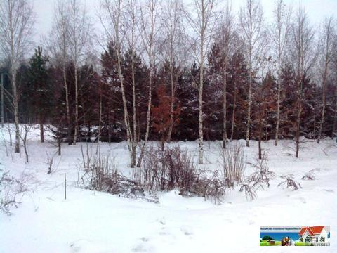Уютный участок 12,5 соток у леса рядом с рекой Искона, д. Пуршево - Фото 4