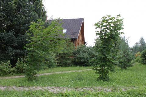 Лесной участок 30 соток в поселке премиум-класса Новой Москвы - Фото 5